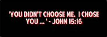 I-Choose-You..